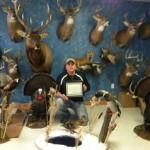 Saint Clair County ,Michigan Deer Shoulder mount